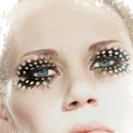 Fashion Feather Lashes