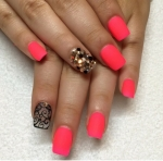 Lace Studded Color.